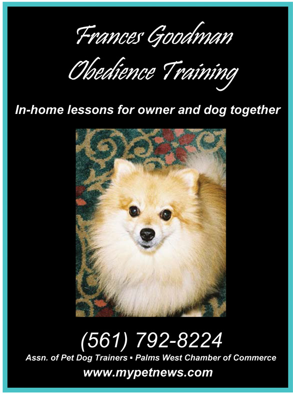 For Obediance Training, call (561) 792-8224.