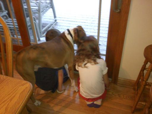 dog_kids_snowfall
