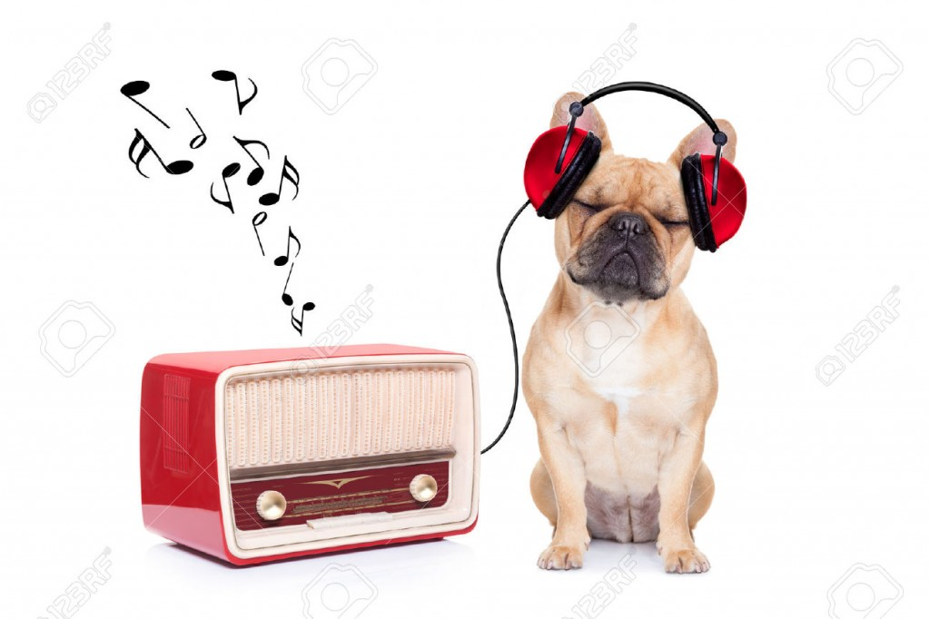 Bulldog-Music