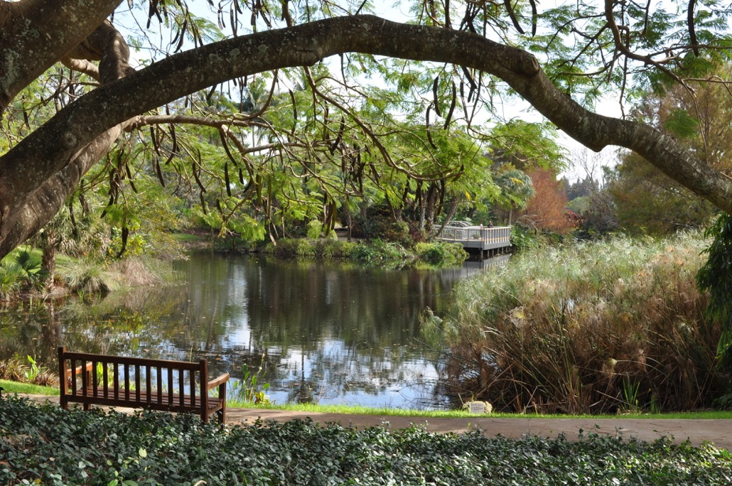 The Mounts Botanical Garden Of Palm Beach County To Host Six Events