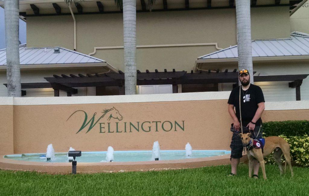 sarge wellington