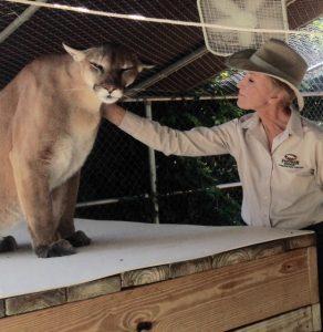 Puma and Judy petting