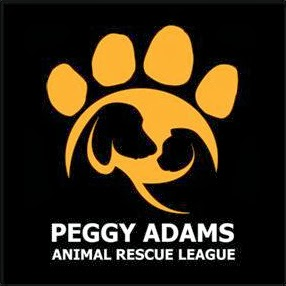 Peggy Adams West Palm Beach