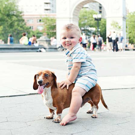 10-Beautiful-Baby-Dog-Friendships-1-10