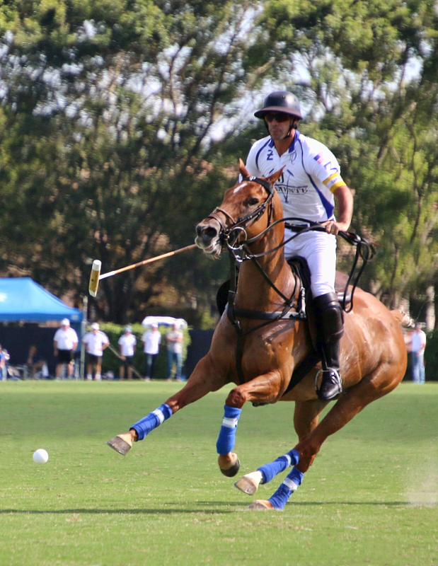 Valiente Wins Second Leg Of Triple Crown