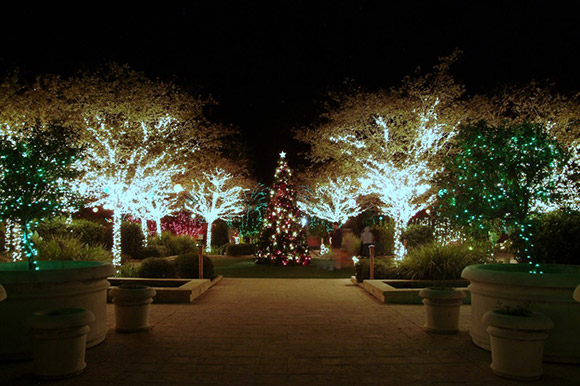(West Palm Beach, FL – November 7, 2018) Friends of the Mounts Botanical  Garden today announced that it would be celebrating the garden's 40th  Anniversary ... - Mounts Botanical Garden To Present GARDEN OF LIGHTS: A Winter