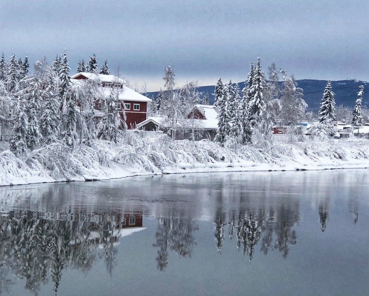 Things to see and do in Fairbanks Alaska on Travel with Terri
