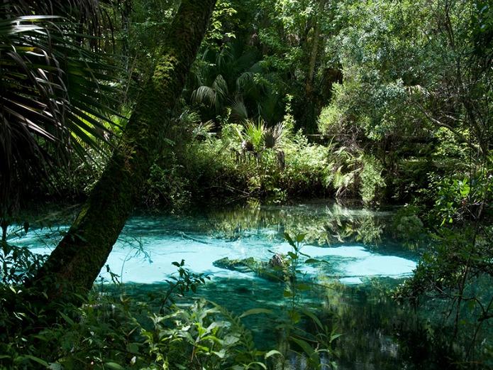 Florida road trips on #travelwithterri for Around Wellington